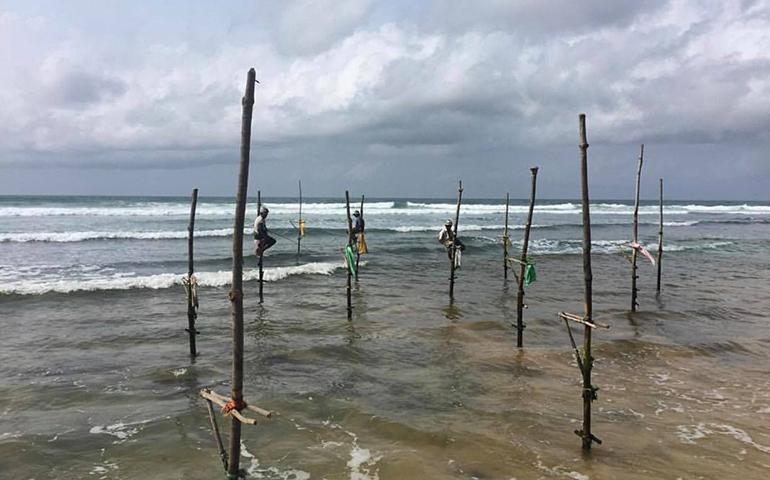 Traditional Stilt Fisherman, Sri Lanka