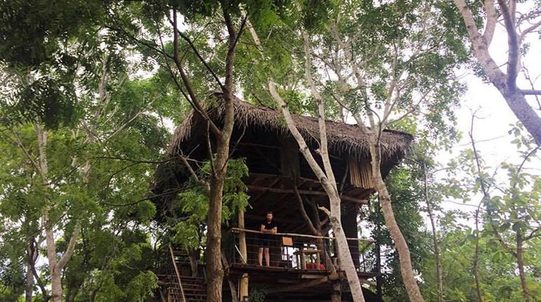 Tissa tree house