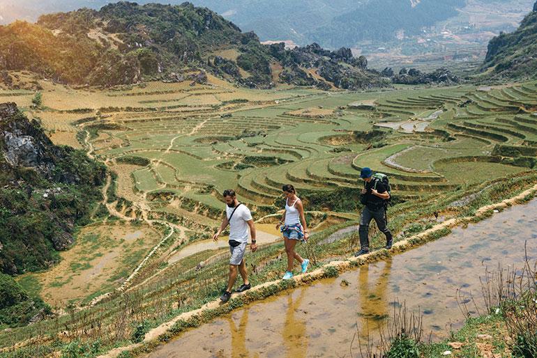 Vietnam field