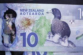 New Zealand note with Kiwi fruit